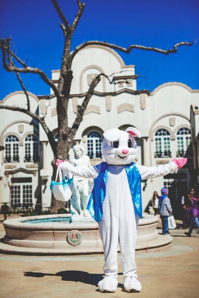 easter-bunny Easter Egg Hunt Extravaganza
