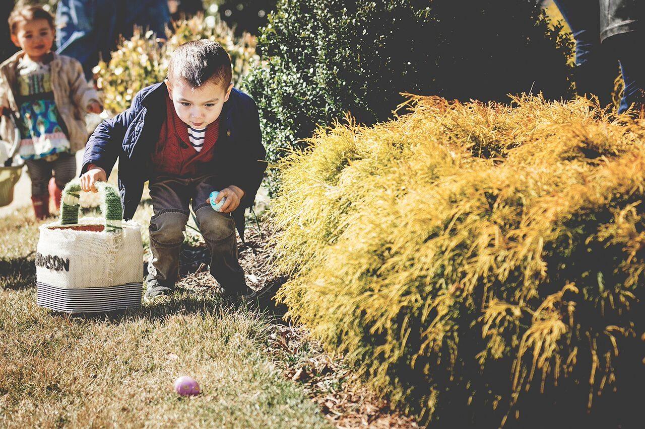 easter-morais4 Easter Egg Hunt Extravaganza