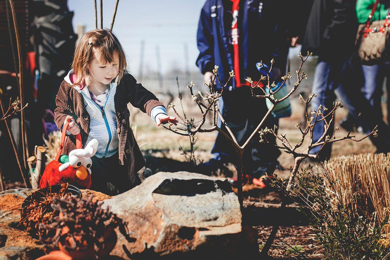 easter-morais5 Easter Egg Hunt Extravaganza