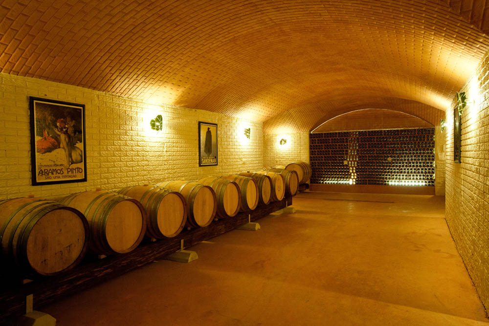 morais-vinyards-and-winery-the-winery-cellars-adegas-14 Cellars